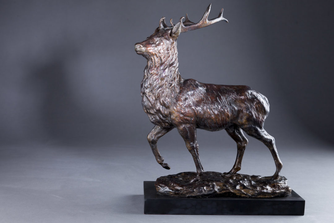 Highland Stag Sculpture by Sally Amoore