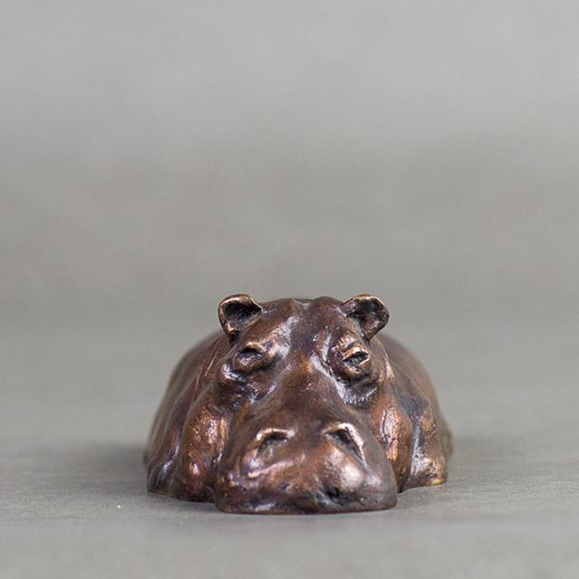 Half Submerged Hippo